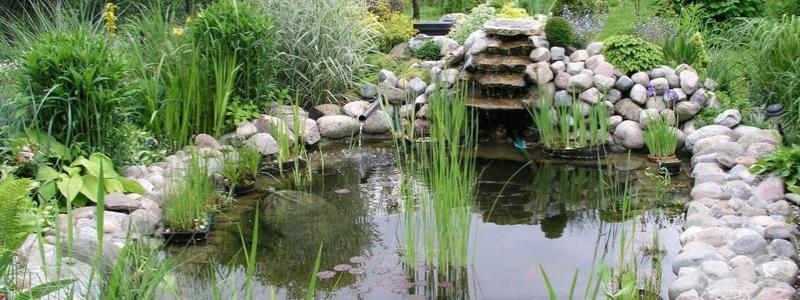 Искусственный водоем на даче: как сделать и как оформить