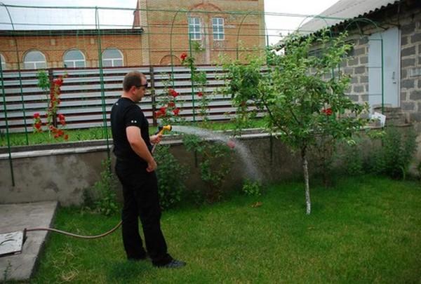 как организовать полив на даче фото
