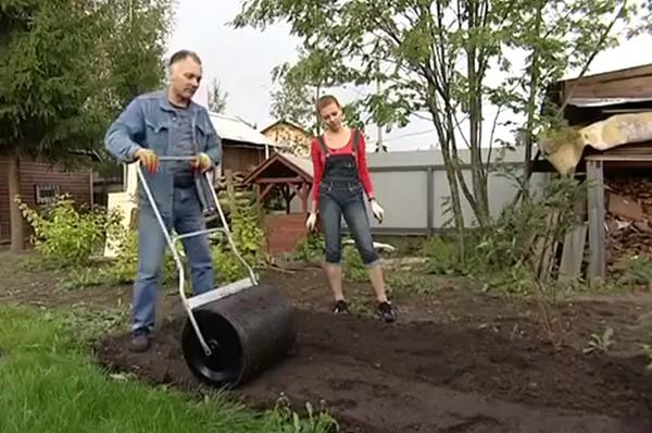 как сделать газон на даче своими руками фото