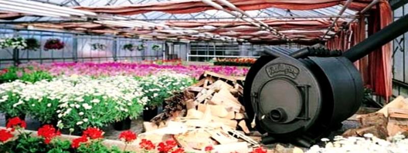 Отопление теплицы: варианты дачного обогрева