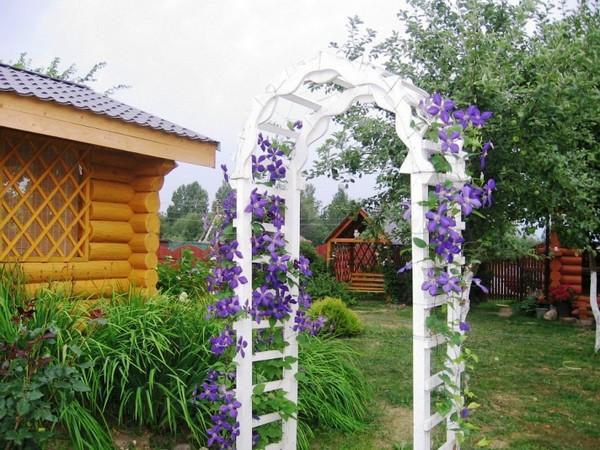 садовые опоры для вьющихся растений фото