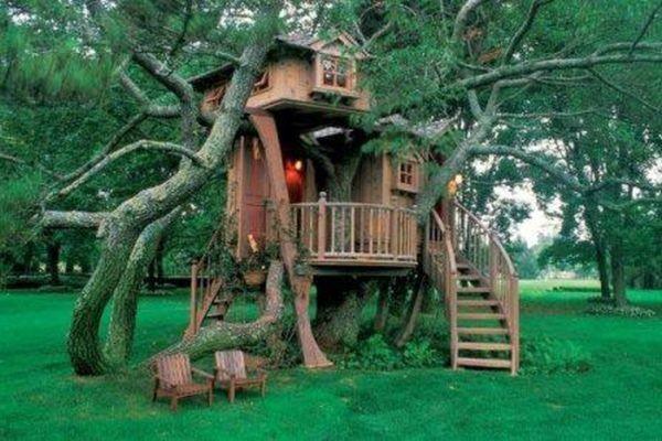 домик на дереве для детей фото