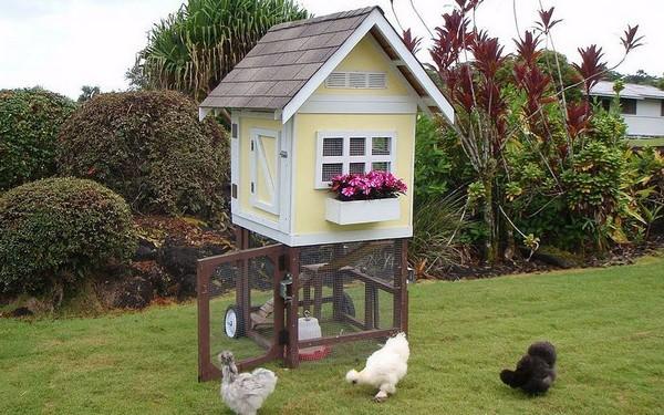 как построить летний курятник на даче  фото