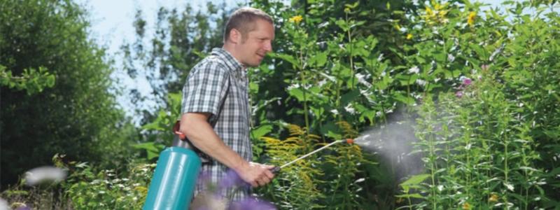 Опрыскиватель садовый: какой выбрать