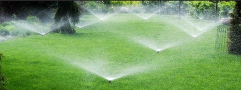 Автоматический полив газона: устройство и самостоятельный монтаж