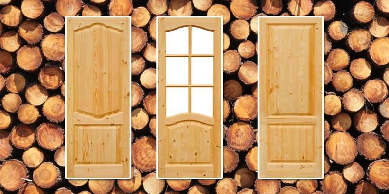 двери для дачи фото
