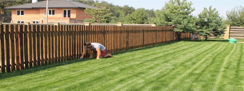Аэратор для газона: как выбрать, как сделать своими руками