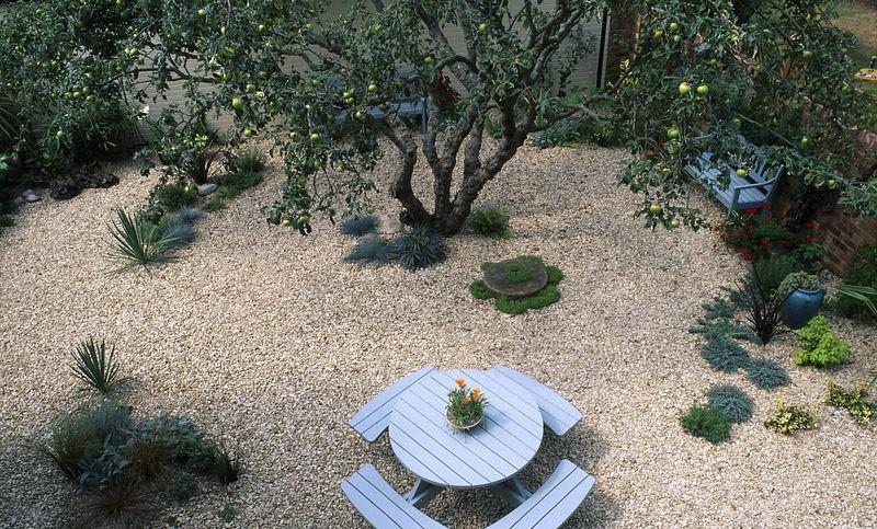 гравийный сад своими руками фото