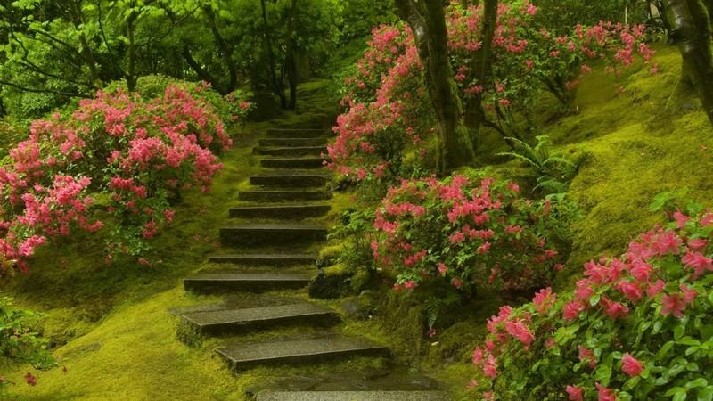 ландшафтные лестницы фото
