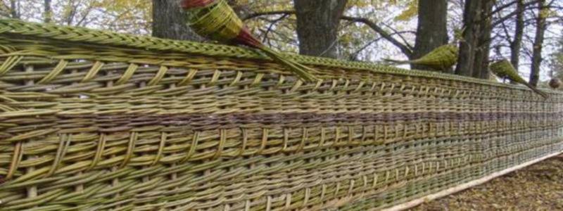 Плетень своими руками: как сделать на даче