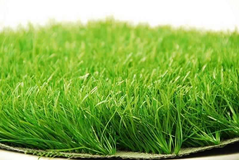декоративная искусственная трава фото