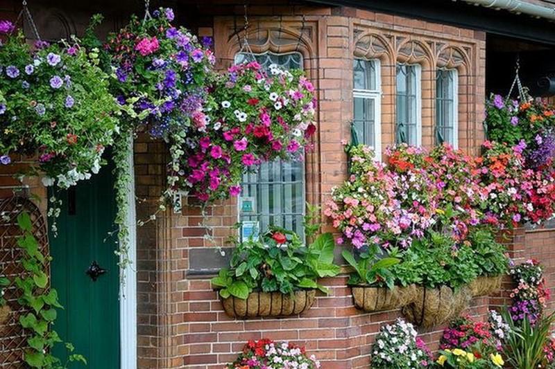 цветочная стена фото