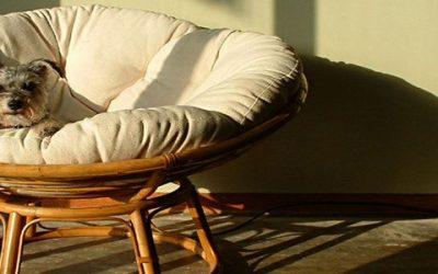 Кресло папасан: идеальный вариант плетеной мебели для дачи