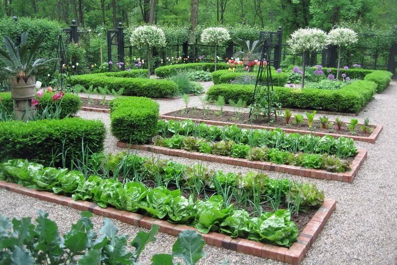огородная зона на даче фото