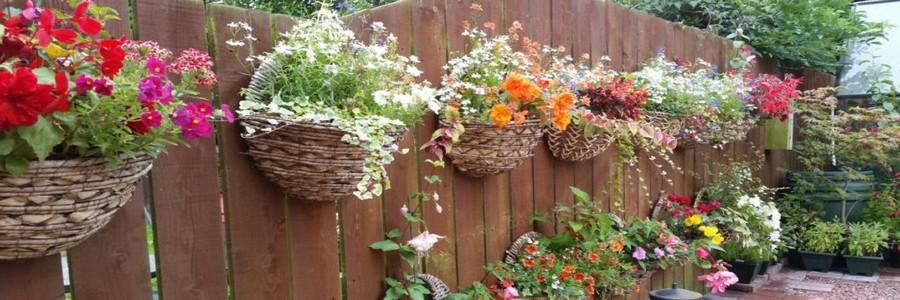 Как украсить забор: яркие идеи для дачи