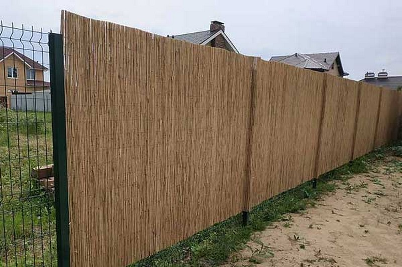как выглядит камышовый забор фото
