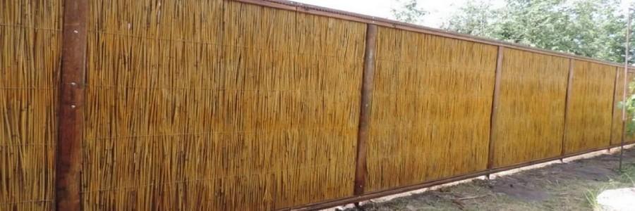 Забор из камыша: разновидности и как сделать самостоятельно
