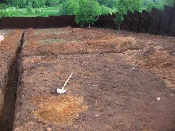 как сделать ровный газон на даче фото