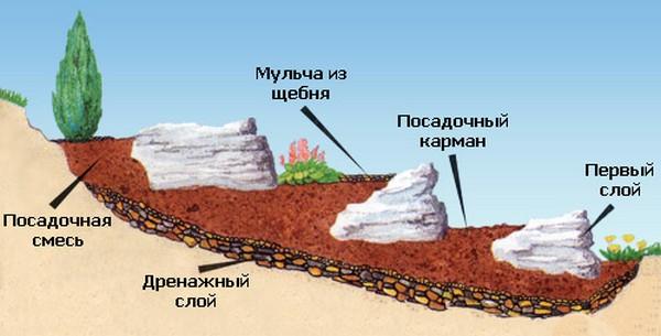 как сделать альпийскую горку на даче своими руками фото