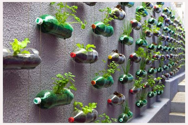 вертикальные грядки из пластиковых бутылок фото