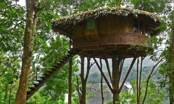 как сделать домик на дереве фото
