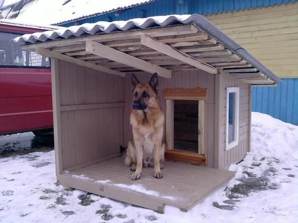 деревянная будка для собаки фото