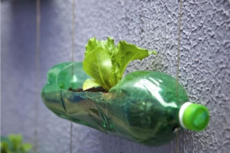 изделия из пластиковых бутылок для дачи фото
