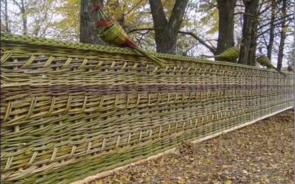 плетеный забор из лозы фото