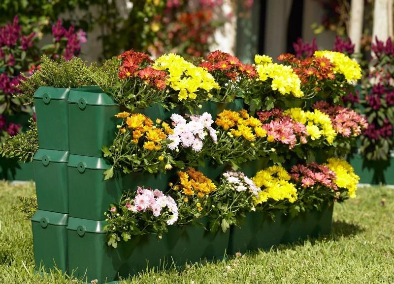 вертикальное озеленение цветами фото