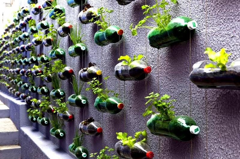 что можно сделать из бутылок для огорода фото