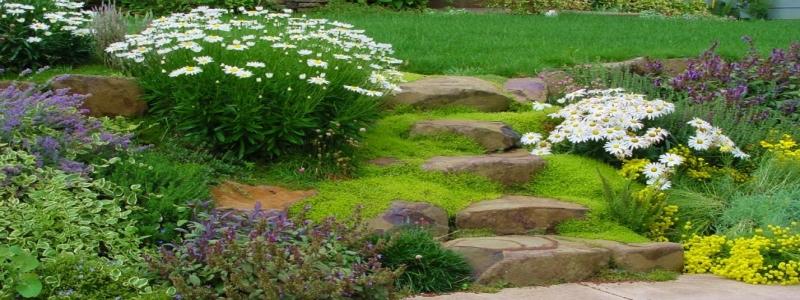 Лестница садовая: ее разновидности и самостоятельное изготовление
