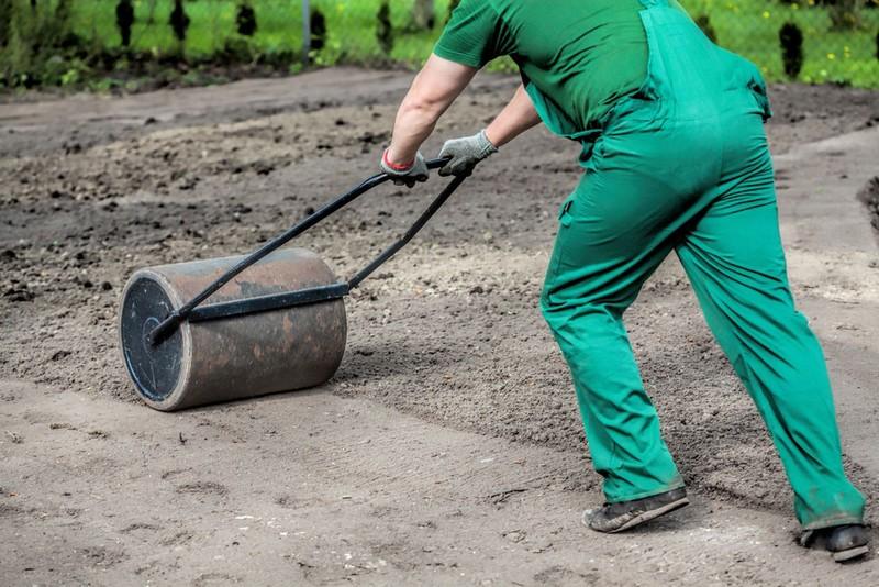 как сажать газонную траву фото