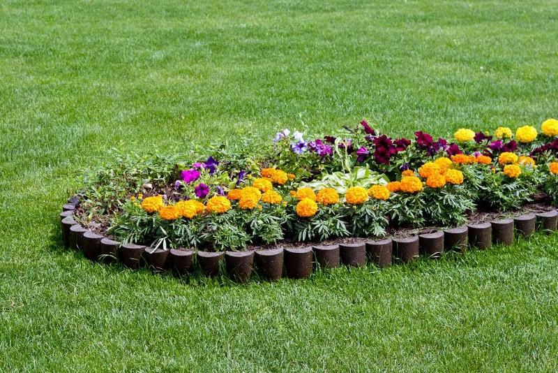 садовые бордюры для клумб фото