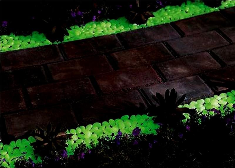 светящиеся камни на даче фото